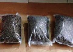 Trovati con 40 chili di droga nell'auto: arrestati due agrigentini