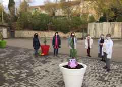 Tre alberelli piantati dai bimbi dell'asilo
