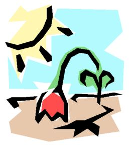 withering-plant-clipart-dying-plant-clipart-dying-gHNLZW-clipart