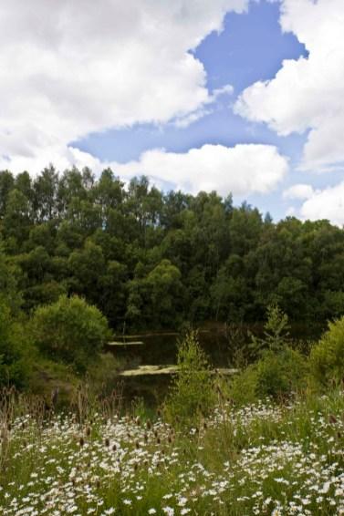 Redlees Park