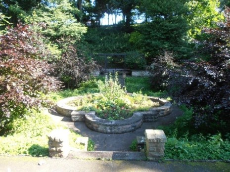 Lily Pond Before