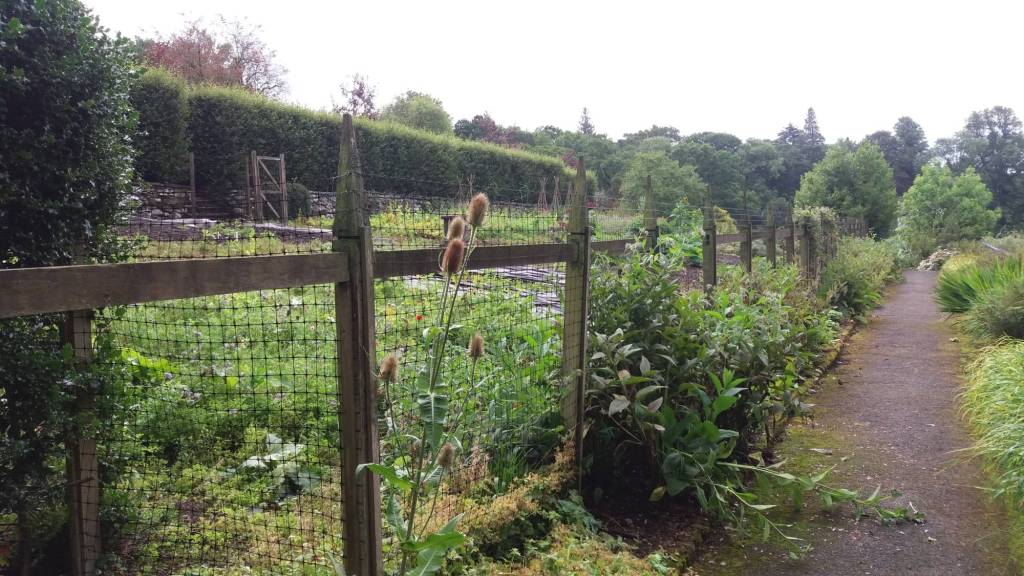 Brockhole Kitchen Garden