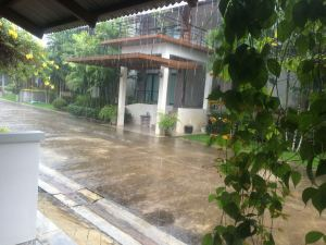 Rain at Wassana