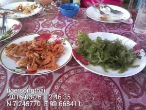 Shrimp & Seaweed