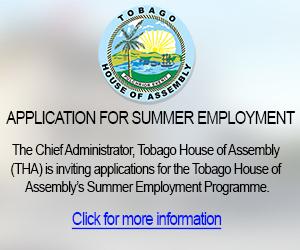 Summer Employment Programme