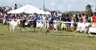Ayla Stanisclaus and Highway Runner run away to win the female jockeys race.