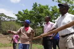 Farmer Ken Webster shows Chief Secretary Dennis and Project Coordinator William Benjamin crops on his plot at the Courland Agricultural Development Project, Black Rock.