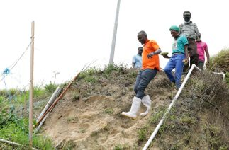 Chief Secretary Hon. Ancil Dennis steps down the slope of the hillside terraces.