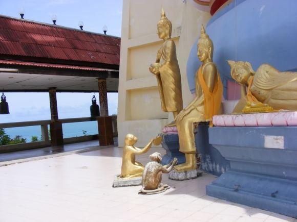 www.thai-dk.dk/penfoto/3/BigBuddha4.jpg