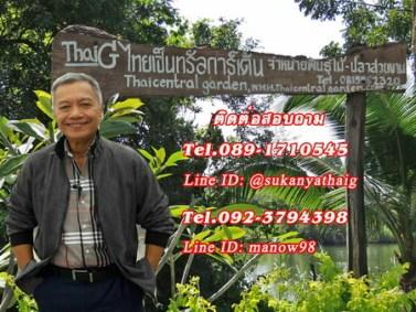 ไทยเซ็นทรัลการ์เด้น สวนเกษตรไทย