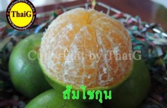 ส้มโชกุน เนื้อกรอบหวาน