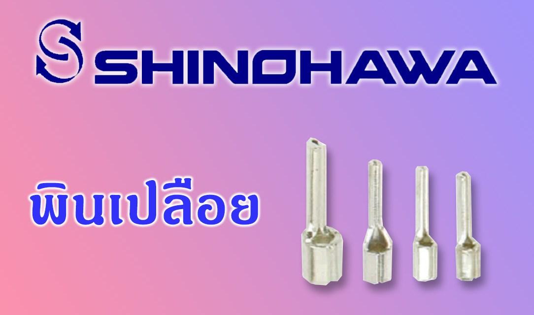 SHINOHAWA: พินเปลือย