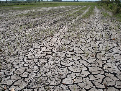 Thailand drought disaster in 48 provinces