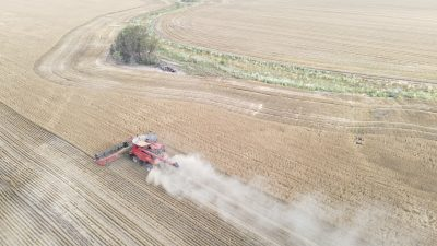 Wheat is harvested by a combine near Moree, Australia, 27 October 2020 (Photo: Reuters/Jill Gralow).