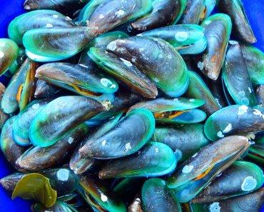 Pattaya baech seafood