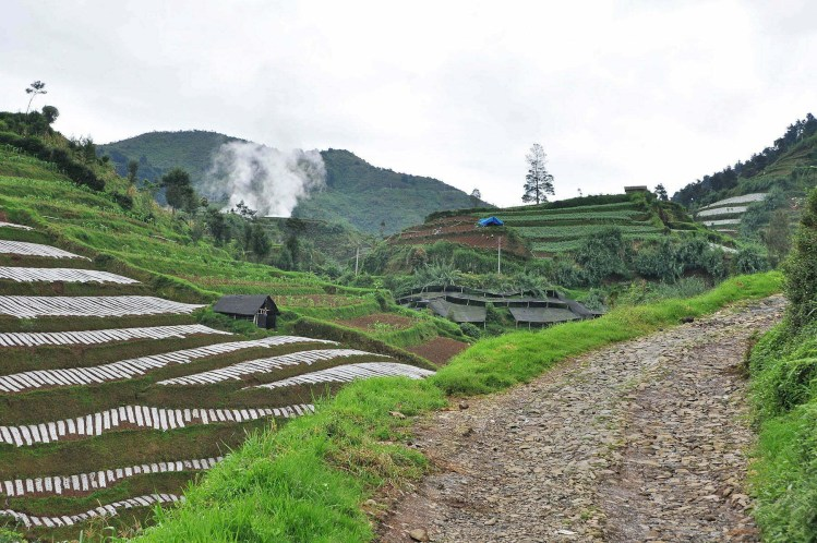 cover balade dieng plateau