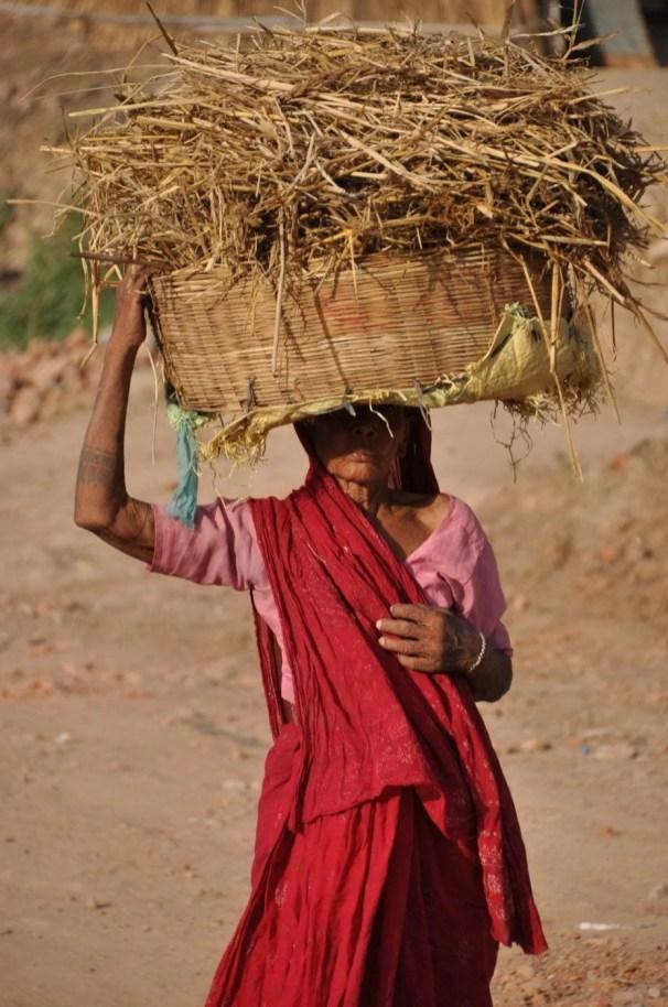 vieille femme region pauvre bihar bodhgaya - inde
