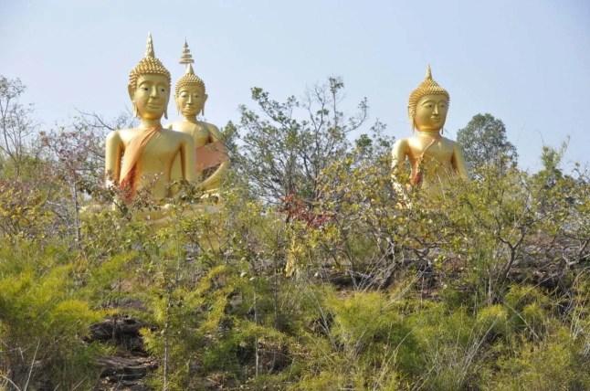 Bouddhas-plateau-Wat Patihan Ubon Ratchathani