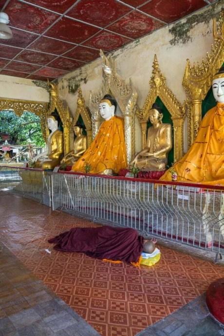moine temple pathein birmanie