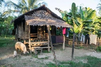 campagne hpa an birmanie