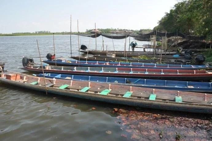 Sud Thaïlande lac Pattalung