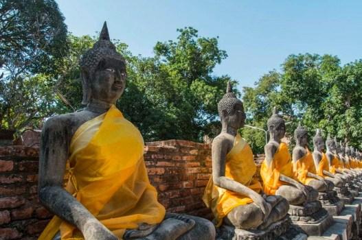 Statues bouddha - Wat Yai Chai Mongkol - Ayutthaya