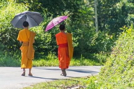 temple Luang Namtha - Laos