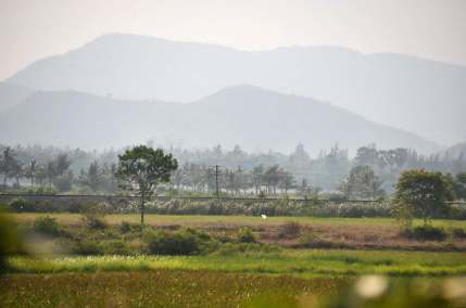 campagne près de Sam Roi Yot