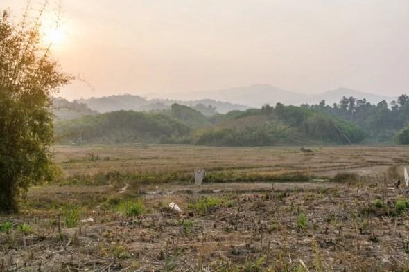 paysage nord thailande en avril