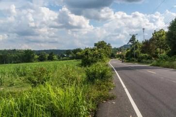 paysage thailande en juin