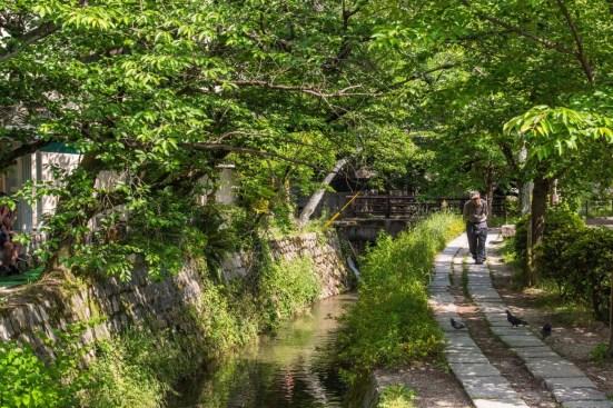 chemin de la philosophie - kyoto