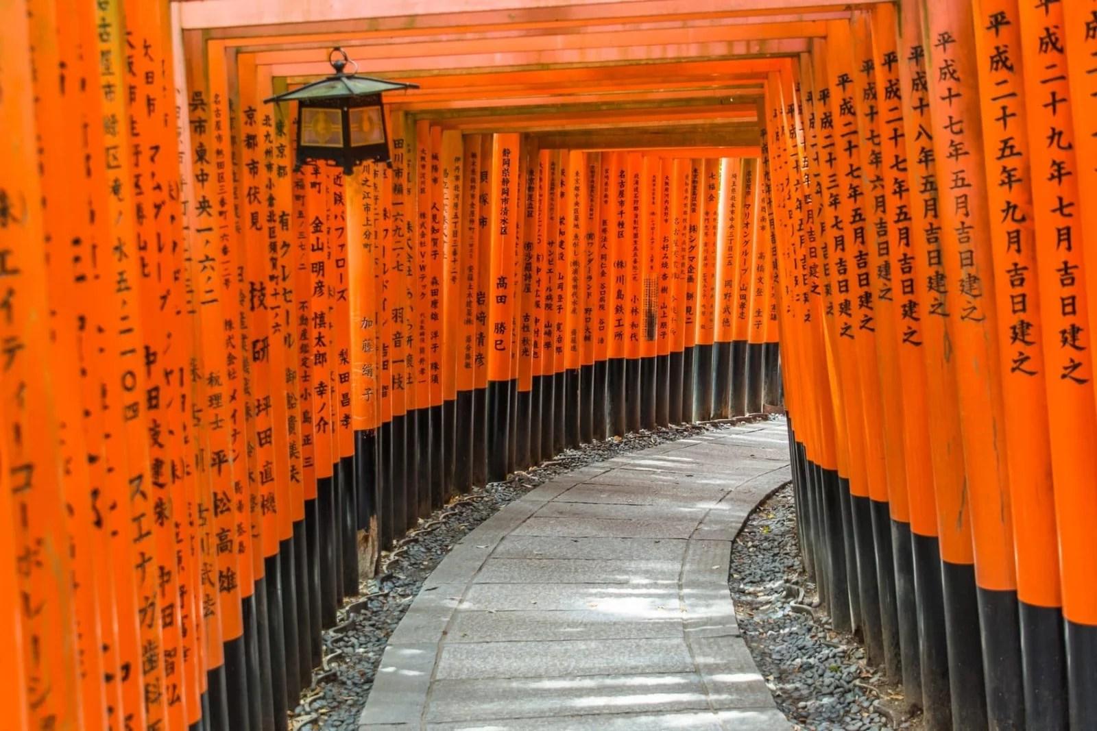 tunnel torii fushimi inari taisha - kyoto