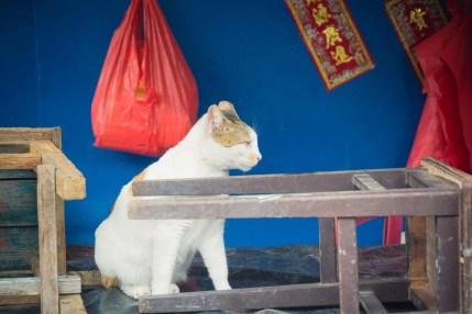 chat village tai o - lantau island hong kong