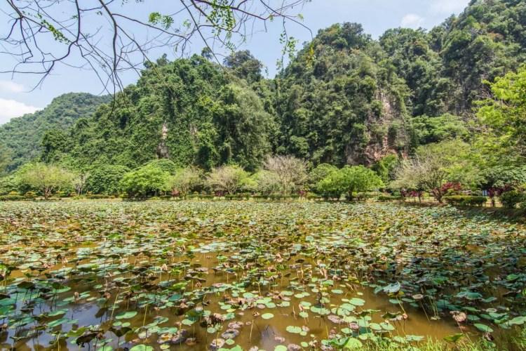 jardin kek lok tong ipoh - malaisie