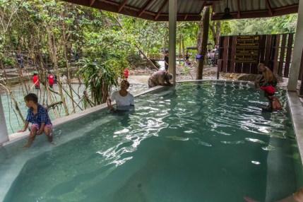 piscine pornrang hot spring - ranong - thailande