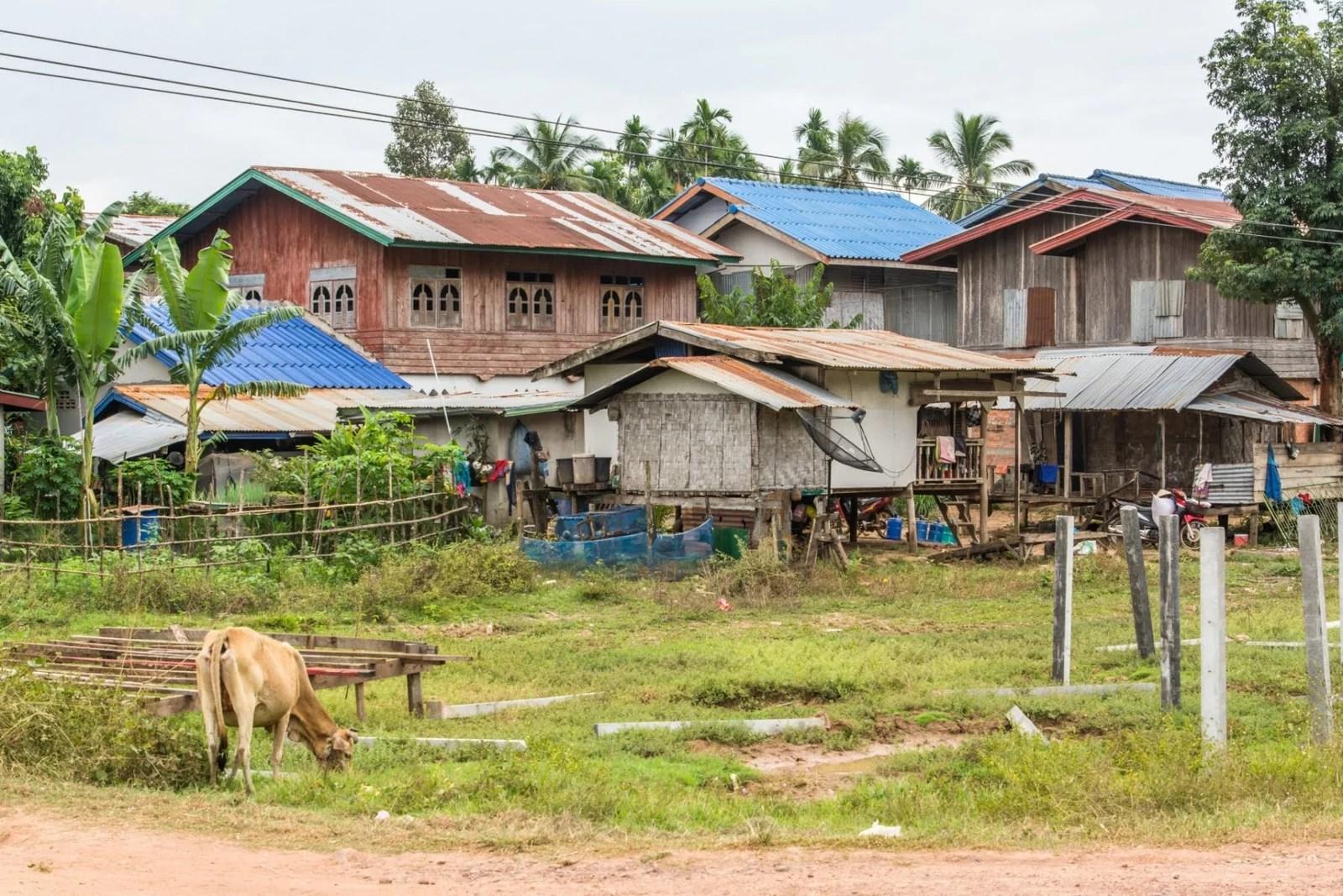 maisons campagne champassak - laos