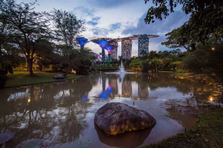 bassins nenuphars gardens by the bay singapour