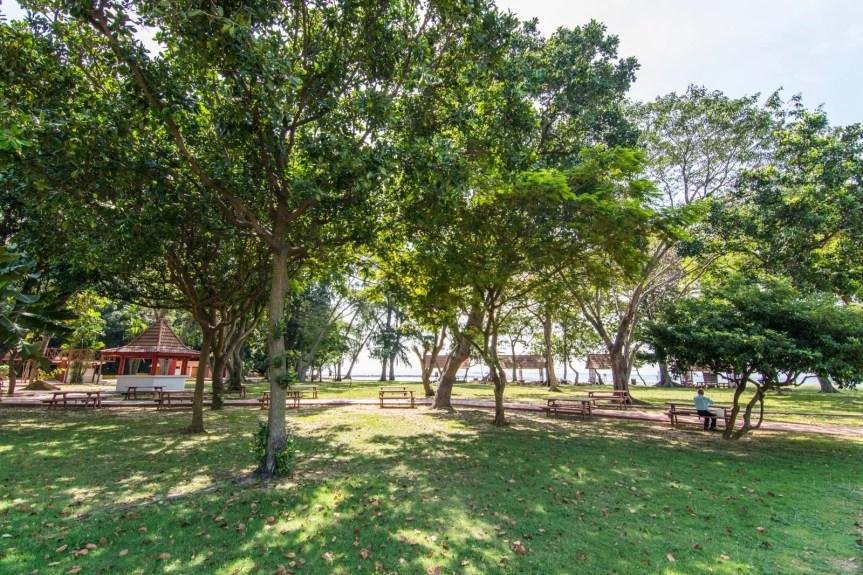 bois kusu island singapour