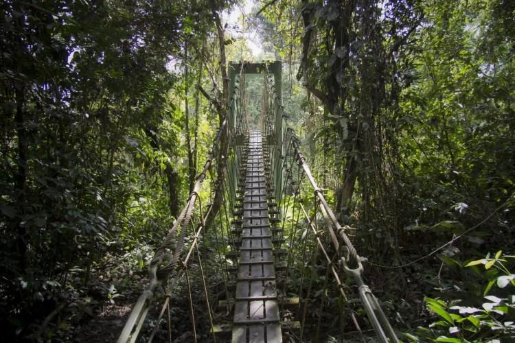 gunung mulu national park sarawak borneo
