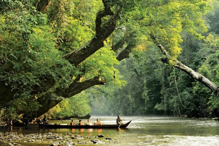 lata-berkoh-taman-negara-malaisie