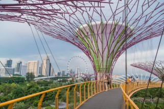 sur passerelle skyway gardens by the bay singapour