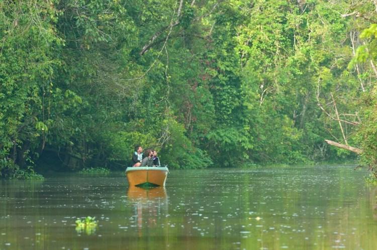 tour-riviere-kinabatangan-sukau-sabah-malaisie