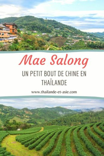 pinterest mae salong petit bout de chine thailande