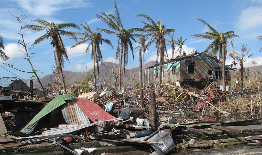 A few palm trees remain standing amid the destruction caused by a typhoon n the city of Tacloban, Philippines