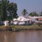 Crocodile-sculpture in Phichit