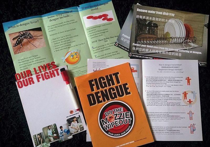 11 Thais die in dengue fever outbreak this year