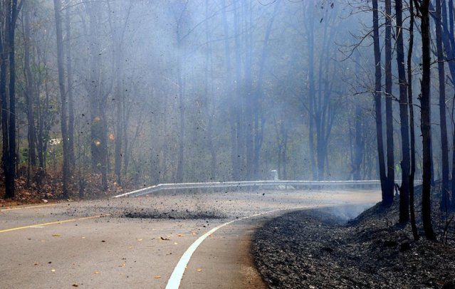 Forest fires burn out 140 rai in Tak