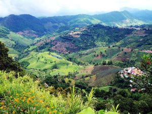 Hills in Ban Ho Mae Salong, Northern Thailand