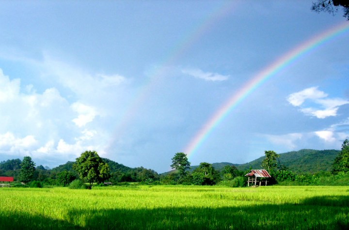 Rainbow from a rice field in Phrae Province