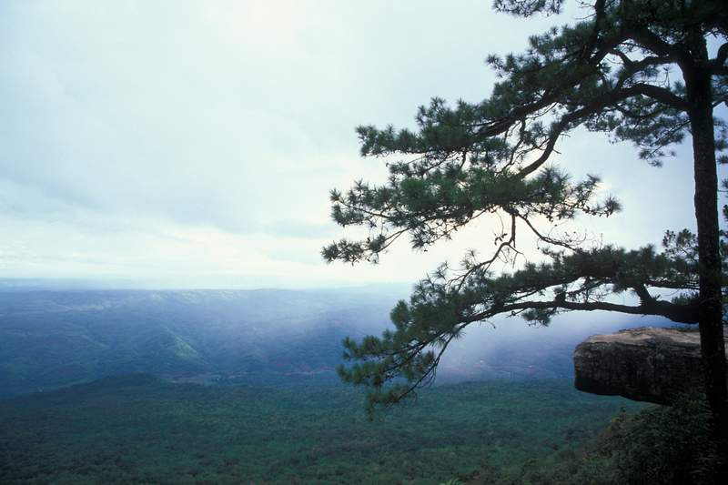 Cliffs of Phu Kradung mountain in Thailand